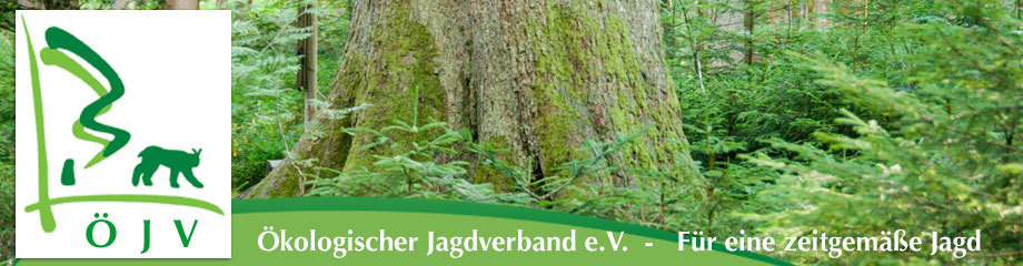 Kontakt Ökologischer Jagdverband ÖJV